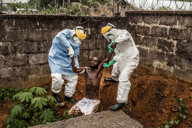 Pete Muller, a U.S. photographer of Prime on assignment for National Geographic/The Washington Post, won the First Prize in the General News Category, Stories, of the 2015 World Press Photo contest with his series of pictures which includes this one of medical staff at the Hastings Ebola Treatment Center escorting a man in the throes of Ebola-induced delirium back into the isolation ward from which he escaped, in Freetown, in this picture taken November 23, 2014 and released by the World Press Photo on February 12, 2015. (Photo by Pete Muller/Reuters/Prime/National Geographic/The Washington Post/World Press Photo)