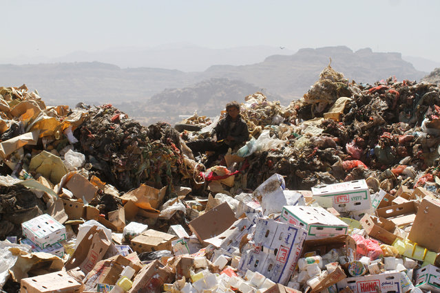 A boy sits on a pile of rubbish at a landfill site on the outskirts of Sanaa, Yemen November 16, 2016. (Photo by Mohamed al-Sayaghi/Reuters)