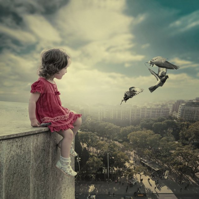 """""""The observer"""". (Photo by Ionut Caras)"""