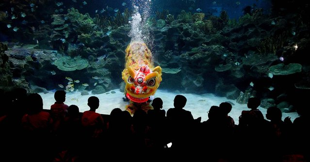 Two divers perform the underwater Chinese lion dance in front of visitors on the first day of Chinese New Year celebrations at the Aquaria KLCC underwater park in Kuala Lumpur, Malaysia. (Photo by Daniel Chan/Associated Press)