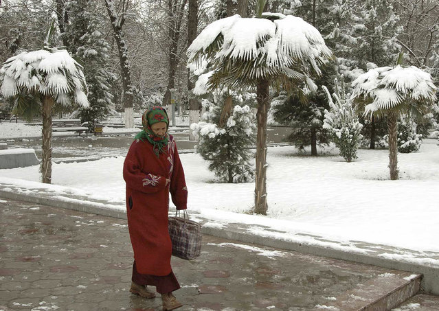 A woman walks through a park after snowfall in Ashgabat February 26, 2007. (Photo by Reuters/Stringer)
