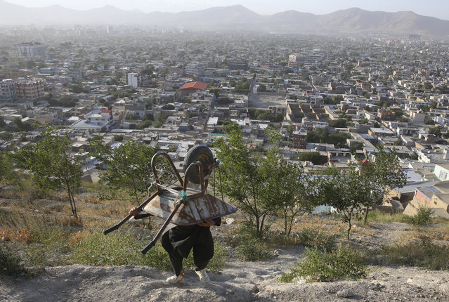 An Afghan boy carries his wheelbarrow in Kabul, Afghanistan, Monday, August 5, 2019. (Photo by Rafiq Maqbool/AP Photo)