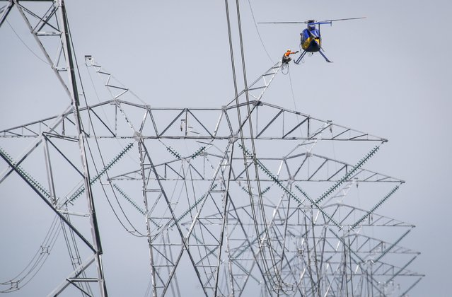 A lineman reaches for a lift from a helicopter as work continues on twinning power lines that run from Calgary to Edmonton near Carstairs, Alta., Wednesday, July 23, 2014. (Photo by Jeff McIntosh/AP Photo/The Canadian Press)