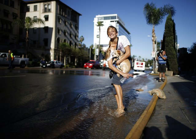 Dina Nadezhdina, 29, carries her dog over a flooded gutter near a major water main break on Sunset Boulevard in West Hollywood, Los Angeles, California September 26, 2014. A large water pipe burst under the Los Angeles suburb of West Hollywood on Friday, flooding the famed Sunset Strip and forcing authorities to shut down the thoroughfare to vehicle traffic during the evening rush hour. (Photo by Lucy Nicholson/Reuters)
