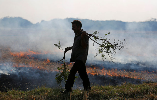 A farmer burns paddy waste stubble in a field on the outskirts of Ahmedabad, November 15, 2017. (Photo by Amit Dave/Reuters)