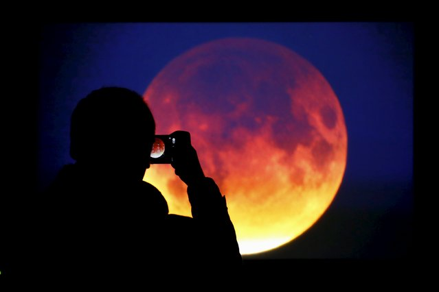 A man takes picture of the screen displaying the moon, appearing in a dim red colour, which is covered by the Earth's shadow during a total lunar eclipse in Warsaw, Poland September 28, 2015. Sky-watchers around the world were treated when the shadow of Earth cast a reddish glow on the moon, the result of rare combination of an eclipse with the closest full moon of the year. (Photo by Kacper Pempel/Reuters)