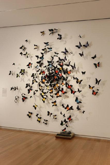 Paul Villinskis By Butterflies Art