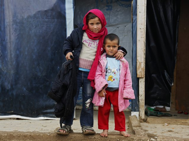 A Syrian refugee girl stands with her brother near their tent at a refugee camp in Zahle in the Bekaa valley November 27, 2014. (Photo by Jamal Saidi/Reuters)