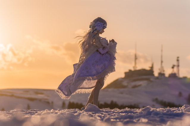 """The end of winter"". Location: Utsukushigahara Highlands at sunset. (AZURE)"