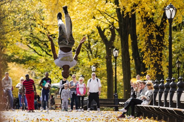 A street performer jumps in the air inside Central Park as the colors of autumn become more prevalent in New York, October 29, 2015. (Photo by Lucas Jackson/Reuters)