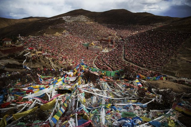 Tibetan prayer flags flutter above the Larung valley and its Larung Wuming Buddhist Institute, located some 3700 to 4000 metres above the sea level in remote Sertar county, Garze Tibetan Autonomous Prefecture, Sichuan province, China October 30, 2015. (Photo by Damir Sagolj/Reuters)