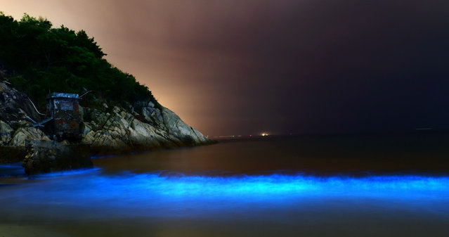 An algae bloom of noctiluca scintillans, also known as sea sparkle, illuminates seawater near Dapeng Bay in Shenzhen, China on April 6, 2016. (Photo by  Imaginechina/Rex Features/Shutterstock)