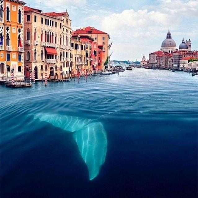 Surreal Photos By Robert Jahns A.K.A. Nois7