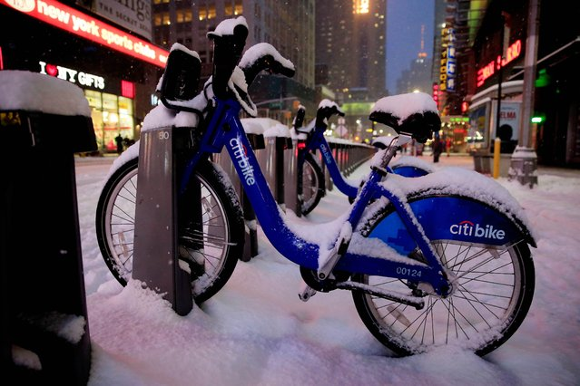 A Citi Bike is covered in snow in Times Square on January 26, 2015 in New York City. (Photo by Alex Trautwig/AFP Photo)