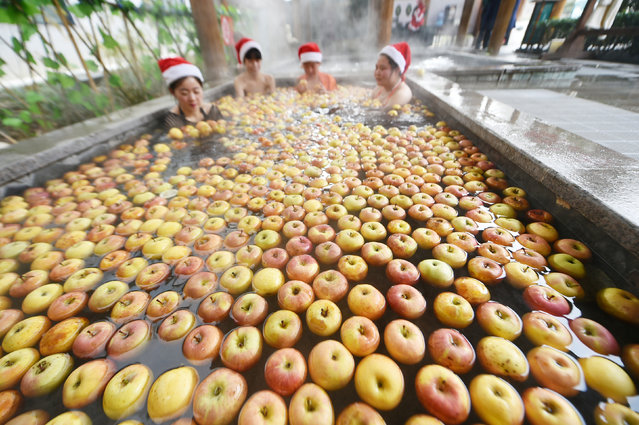 People wearing Christmas hats bath in a pool of apples during a Christmas service at a hot spring in Luoyang, Henan province, China, December 24, 2016. (Photo by Reuters/Stringer)