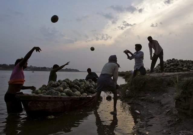 Farmers unload pumpkins from a boat on the banks of the river Ganges in the northern Indian city of Allahabad March 30, 2015. (Photo by Jitendra Prakash/Reuters)