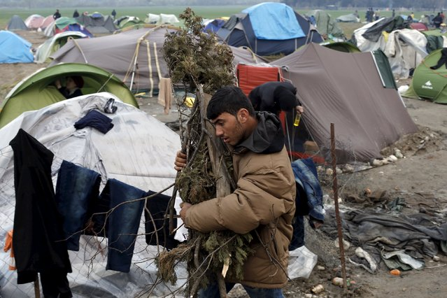 A refugee carries firewood at a makeshift camp at the Greek-Macedonian border near the village of Idomeni, Greece, March 17, 2016. (Photo by Alkis Konstantinidis/Reuters)