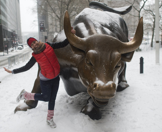 A tourist poses for a photo with the bull on Broadway March 14, 2017 in New York. Winter Storm Stella unleashed its fury on much of the northeastern United States on March 14 dropping snow and sleet across the region and leading to school closures and thousands of flight cancellations. Stella, the most powerful winter storm of the season, was forecast to dump up to two feet (60 centimeters) of snow in New York and whip the area with combined with winds of up to 60 miles per hour (95 kilometers per hour), causing treacherous whiteout conditions. But after daybreak the National Weather Service (NWS) revised down its predicted snow accumulation for the city of New York, saying that the storm had moved across the coast. (Photo by Don Emmert/AFP Photo)