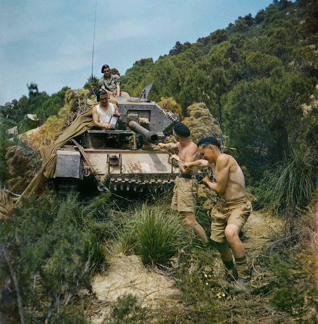 A crew from the 16th/5th Lancers, 6th Armoured Division, cleaning the gun barrel of their Crusader tank at El Aroussa in Tunisia, May 1943. (Photo by Ted Dearberg/IWM/PA Wire)