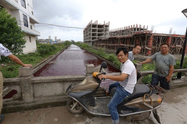 The river in Xinmeizhou village in eastern China's Zhejiang province quickly filled up with the red colored liquid which had a strange smell, according to villagers, July 25, 2014. (Photo by Europics/Newscom)