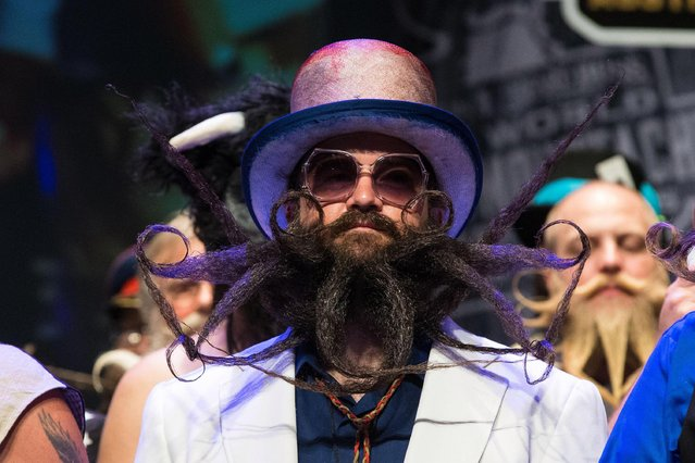 A competitor attends the 2017 Remington Beard Boss World Beard & Moustache Championships held at the Long Center for the Performing Arts on September 3, 2017 in Austin, Texas. (Photo by Suzanne Cordeiro/AFP Photo)
