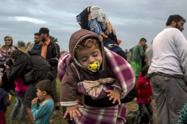A migrant from Syria holds a baby on a field after crossing into Hungary from the border with Serbia near the village of Roszke, September 5, 2015. (Photo by Marko Djurica/Reuters)