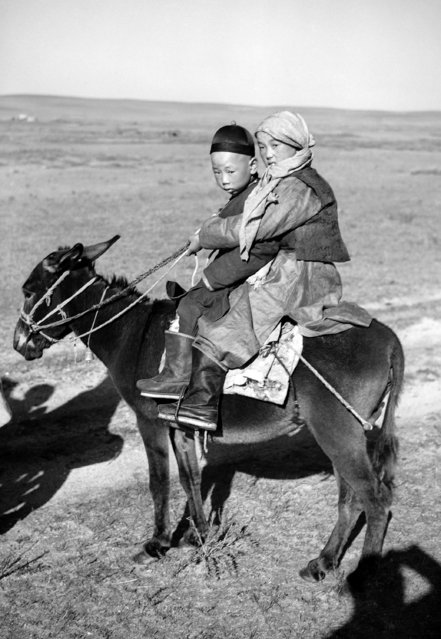 Mongolian children lead the same rugged lives as their parents. When they move about from place to place in their nomadic existence they must, like their elders ride horseback, on October 18, 1936. (Photo by AP Photo)