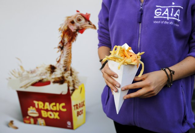 An animal rights activist poses with a cone of fries with sauce in front of a Quick fast food restaurant to protest what they say is the use of eggs coming from battery hens in the sauces of the restaurant, in Brussels, Belgium October 2, 2015. (Photo by Francois Lenoir/Reuters)