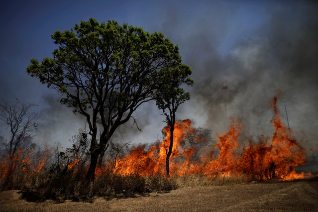View of the devastation caused by a forest fire in front of Brasilia's National Park, in Brasilia, Brazil, September 19, 2017. (Photo by Ueslei Marcelino/Reuters)