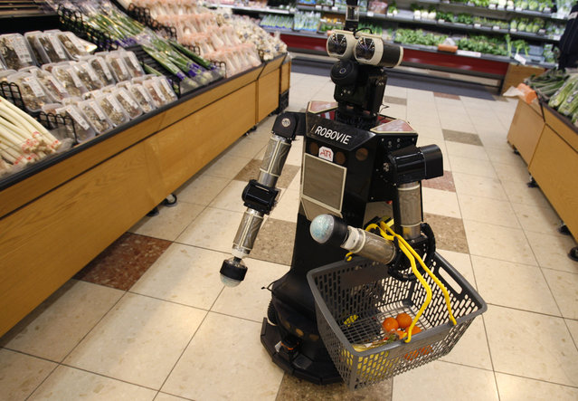 "A robot named ""Robovie-II"", developed by Japanese robotics research institution ATR, moves around at a grocery store during a shopping assisting experiment by utilizing the robot in an ubiquitous network technology platform in Kyoto, western Japan January 6, 2010. The robot greets the shopper at the entrance of the store, follows him to the shelves while holding a grocery basket and reminds him of the items on a shopping list, which the shopper would have entered beforehand in a specialized mobile device. The experiment is aimed to gather data in order to provide livelihood support for the elderly by using robots and network technologies, ATR's researcher Satoshi Koizumi said. (Photo by Yuriko Nakao/Reuters)"
