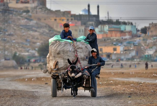 Afghan boys ride on donkey cart transporting plastic bottles for recycling, on the outskirts of Kabul, Afghanistan, on 16 September 2020. Nearly 19 years after the fall of the Taliban regime and the United States invasion, the Afghan government and insurgents on 12 September, began peace negotiations in Doha. Unlike the Taliban team, the 21-member negotiating group sent by Kabul includes four women, who – among other things – will look to safeguard the progress on women's rights since the fall of the Taliban regime that had prevented girls from going to schools and confined women to their homes. (Photo by Hedayatullah Amid/EPA/EFE)