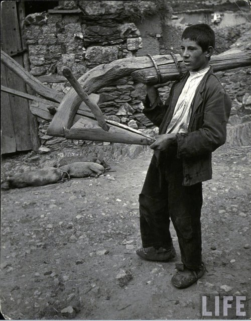 Genaro Curiel, 17, son of man planting beans, carries his crude wooden plow as he heads for work at a wage of 12 pesetas ($.30) and one meal a day. (Photo by W. Eugene Smith/Time & Life Pictures)