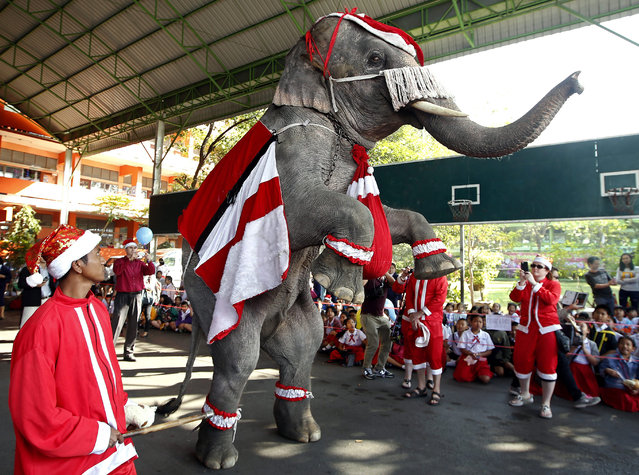 Thai elephant and mahouts dressed as Santa Claus entertain pupils and distribute presents during Christmas celebrations at a school in the world heritage city of Ayutthaya, borth of Bangkok, Thailand, 24 December 2014. The annual event is held to celebrate the Christmas season. (Photo by Rungroj Yongrit/EPA)