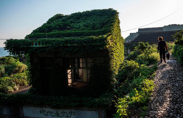 This picture taken on June 1, 2018 shows villagers walking between abandoned houses covered with overgrown vegetation in Houtouwan on Shengshan island, China' s eastern Zhejiang province. (Photo by Johannes Eisele/AFP Photo)