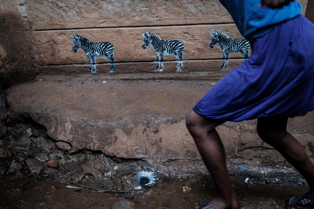 "Three zebras are painted on a wall during a workshop of Portuguese street artist Ricardo Romero as part of his worldwide art project ""Project Matilha"" which raises awareness of human and animal rights in Kibera slum of Nairobi, on April 25, 2018. (Photo by Yasuyoshi Chiba/AFP Photo)"