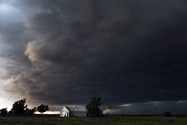 The white barn, El Reno Oklahoma 2013. (Photo by Camille Seaman/Caters News)