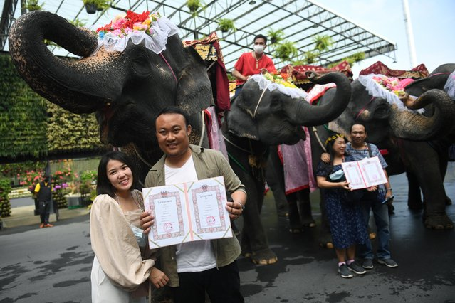 Couple pose with marriage certificates during a Valentine's Day celebration at the Nong Nooch Tropical Garden in Chonburi province, Thailand, February 14, 2021. (Photo by Chalinee Thirasupa/Reuters)