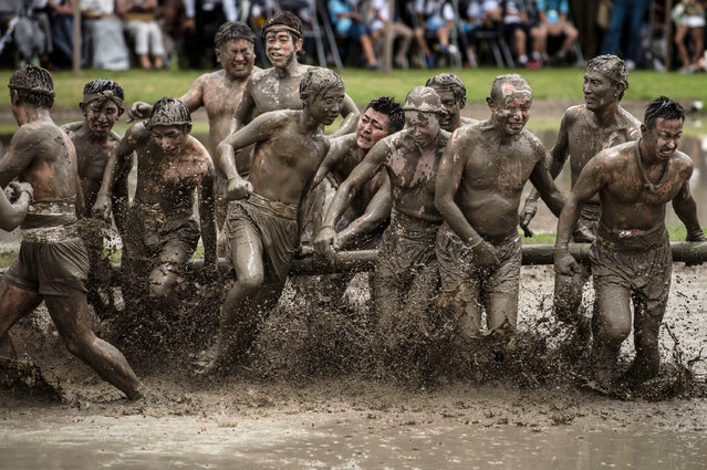 Men battle for pieces of a bamboo fan in a muddy rice field during Isobe-no-Omita, a rice planting festival at Izawanomiya Shrine, Shima City, Mie Prefecture, Japan on June 24, 2018. During the festival, held annually to ensure a good harvest and a bountiful catch of fish, men and women plant rice by hand, and men battle for bamboo in a muddy rice field. The festival is considered one of Japan's three great rice planting festivals, and is a nationally recognized Important Intangible Folk Cultural Property. (Photo by Aflo/Rex Features/Shutterstock)