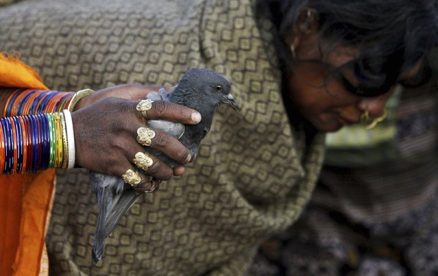 A member of India's Dongria tribe holds a pigeon for sacrifice during the two-day long Niyamraja Festival atop the Niyamgiri hills near Lanjigarh in Kalahandi district, Orissa state, India, Sunday, February 22, 2015. (Photo by Biswaranjan Rout/AP Photo)
