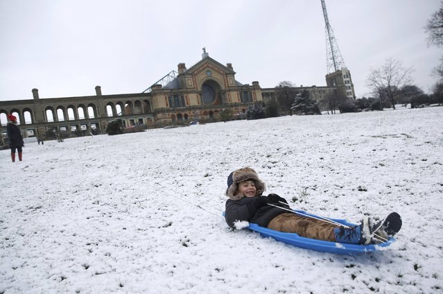 Nekko Sammann sledges in the snow at Alexandra Palace in north London, Britain January 17, 2016. (Photo by Neil Hall/Reuters)