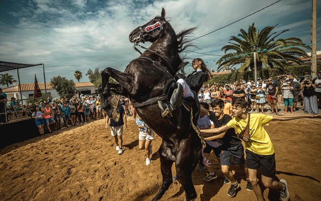 """A """"caixer"""" (horse rider) rears up on his horse surrounded by a cheering crowd during the traditional """"Jaleo"""" at the annual festival in Cala En Porter, Balearic Islands, Spain on September 22, 2019. (Photo by Matthais Oesterle/Alamy Live News)"""
