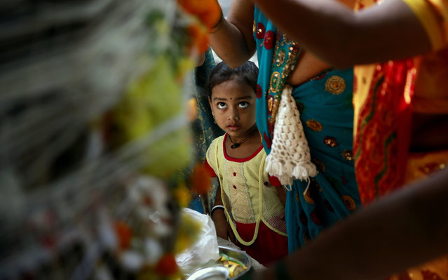 A Hindu girl watches her mother tie a cotton thread around a banyan tree during the festival of Vat Savitri in Mumbai, India, Thursday, June 12, 2014. Vat Savitri is celebrated by married Hindu women where they tie cotton threads around a banyan tree, pray for the longevity of their husbands and keep a day long fast. (Photo by Rafiq Maqbool/AP Photo)