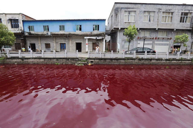"""The water in a river in Xinmeizhou village in eastern China's Zhejiang province turned red overnight, baffling locals, July 25, 2014. Local Na Wan said: """"A few people that were up and about at 5 AM said that everything was normal but then suddenly within the space of a few minutes the water started turning darker and eventually was completely red.  (Photo by Europics/Newscom)"""