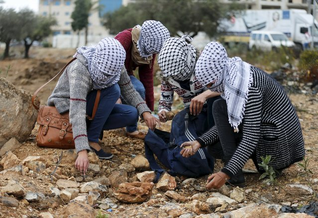 Female Palestinian protesters collect rocks to be hurled towards Israeli troops during clashes near the Jewish settlement of Bet El, near the West Bank city of Ramallah October 29, 2015. Israeli security forces shot dead two Palestinian assailants in the occupied West Bank on Thursday, police and the army said, as a month-long spate of stabbing attacks showed no signs of abating. (Photo by Ammar Awad/Reuters)