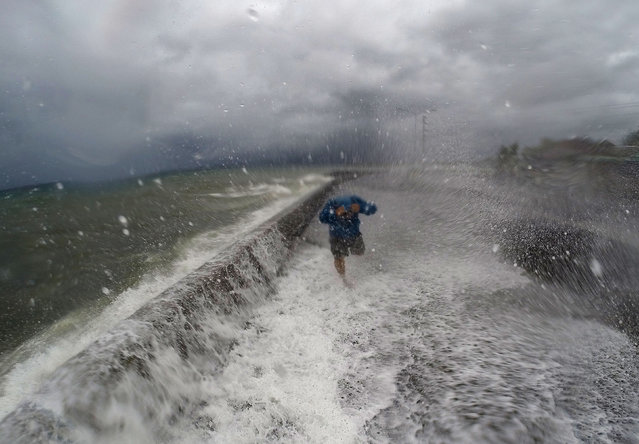 A resident walks past big waves spilling over a wall onto a coastal road in the city of Legaspi in Albay province, south of Manila on December 14, 2015, as typhoon Melor approaches the city. More than 700,000 people fled the central Philippines amid threats of giant waves, floods and landslides as powerful Typhoon Melor approached the archipelago nation, officials said December 14. (Photo by Charism Sayat/AFP Photo)