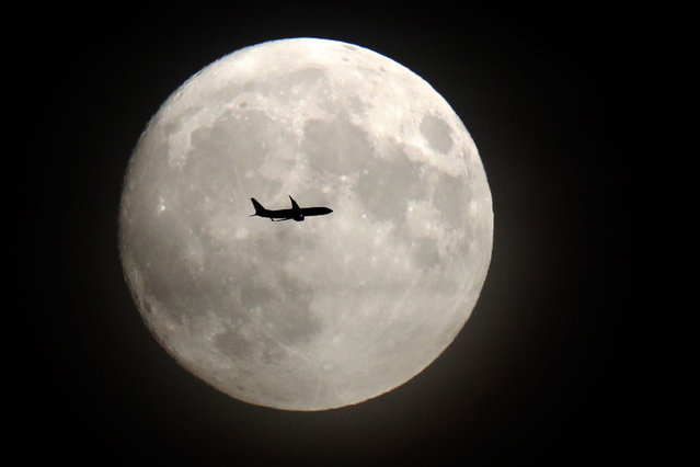 """A commerical jet flies in front of the moon on its approach to Heathrow airport in west London on November 13, 2016. Tomorrow, the moon will orbit closer to the earth than at any time since 1948, named a """"supermoon"""", it is defined by a Full or New moon coinciding with the moon's closest approach to the Earth. (Photo by Adrian Dennis/AFP Photo)"""