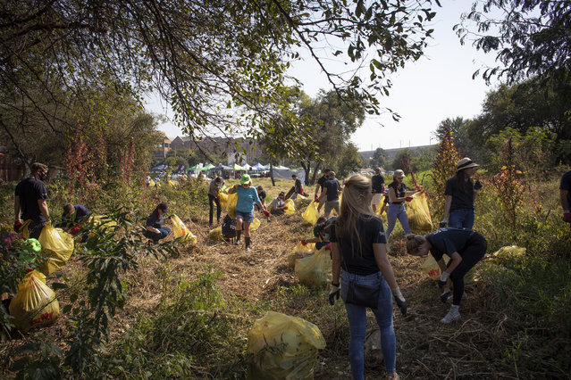 """Concerned citizens and volunteers wear protective equipment and masks as they help to clean up the banks of the Hennops River of trash in Pretoria, South Africa, 22 April 2021. The river clean up is part of the ongoing work by NGO Hennops Revival, which cleans the area at the Hennops River of trash, with this clean up being timed to happen on Earth Day. The Theme of Earth Day 2021 is """"Restore our Earth"""", and the clean up of the rivers banks by the volunteers is helping restore the river, as tons of trash is collected from its banks each year. (Photo by Kim Ludbrook/EPA/EFE)"""