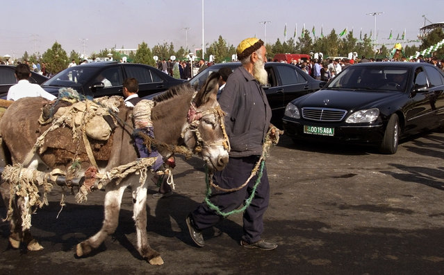 Turkmen elder with a donkey passes a line of government limousines near Ashgabat hippodrome October 28, 2002. (Photo by Shamil Zhumatov/Reuters)