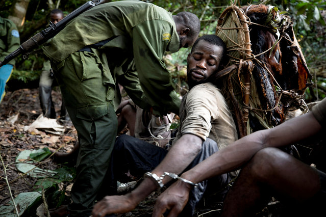 A poacher carrying bushmeat on his back, is detained by park rangers in Salonga National Park, Democratic Republic of the Congo, July 10, 2018. Hunting is prohibited in national parks, which means wildlife is more abundant so poachers often hunt inside the protected areas to find animals with greater ease. (Photo by Thomas Nicolon/Reuters)