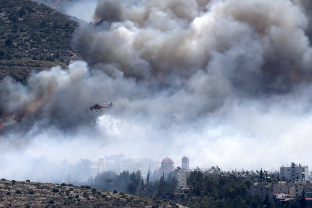 A firefighting helicopter drops water at a raging wildfire at the Kareas suburb, east of Athens, Greece July 17, 2015. (Photo by Alkis Konstantinidis/Reuters)